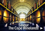 Explore South Africas Cape Winelands - Tour some of the Worlds Best Wine Estates!